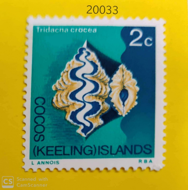 Cocos ( Keeling ) Islands - Sea Mammels - Tridacna Crocea-20033